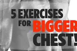 5 Best Chest Exercises For Muscle Building