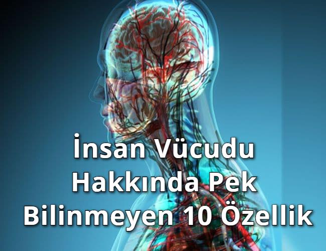 İnsan Vücudu Hakkında Pek Bilinmeyen 10 Özellik
