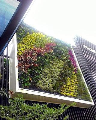 vega-living wall