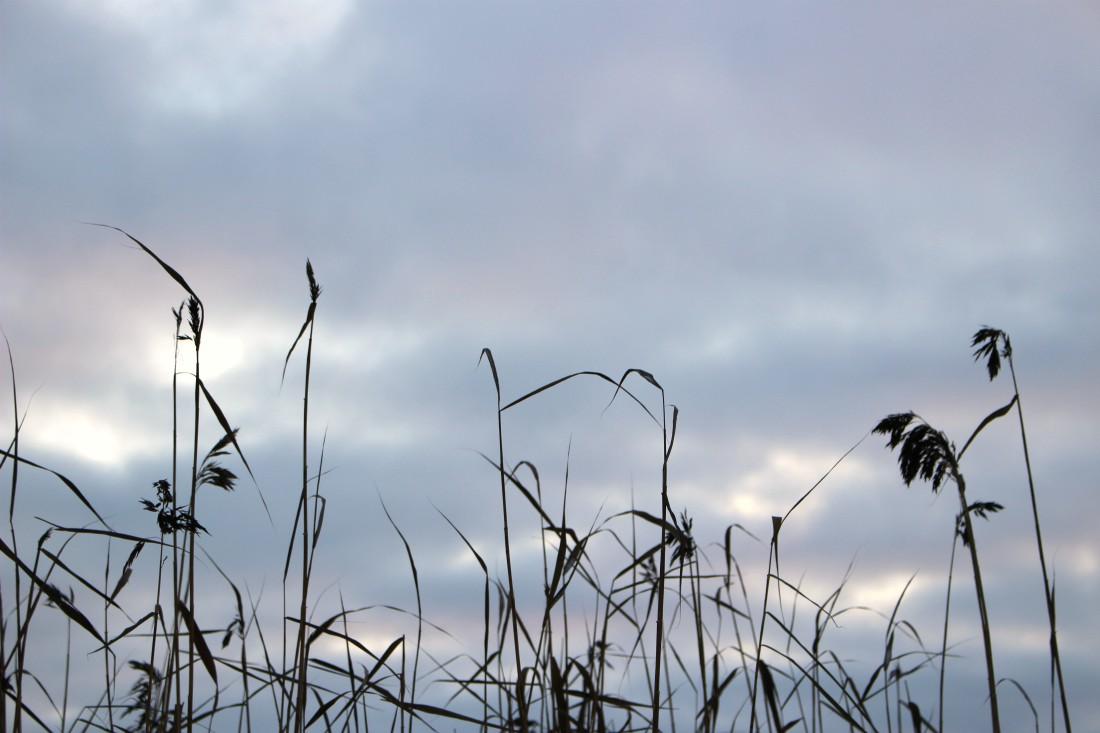 Tuusulanjärvi, talvi, Rouva Sana, viimeisimmät