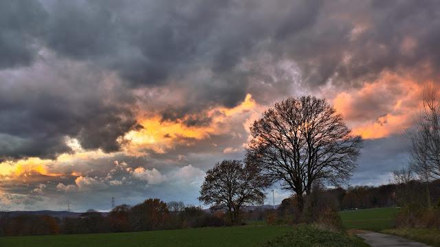 Die Farbe der Woken reicht von orange bis blau-grau. Im Vordergrund ist ein mächtiger Baum.