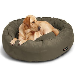Home Dog Beds
