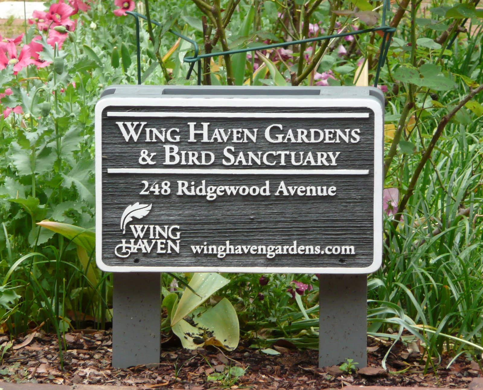 Mayo 39 s masterpieces loving lois ehlert and on to the ocean - Wing haven gardens and bird sanctuary ...