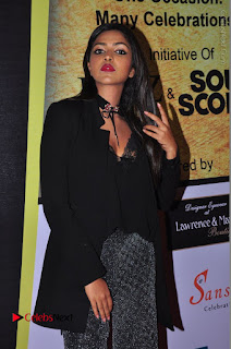Actress Amala Paul Stills in Black Dress at South Scope Lifestyle Awards 2016 Red Carpet  0081.JPG