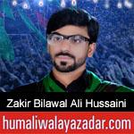 https://humaliwalaazadar.blogspot.com/2019/08/zakir-bilawal-ali-hussaini-nohay-2020.html