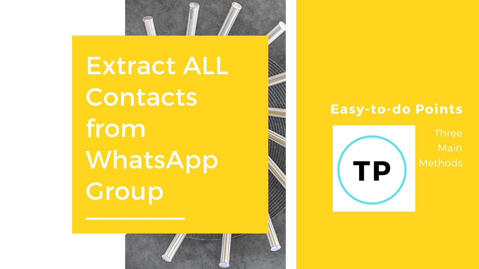 WhatsApp Group Phone Numbers on techypaw.com