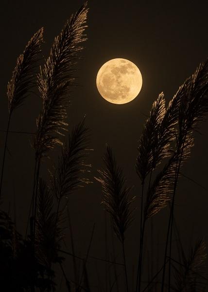 fotos-nitidas-de-la-luna