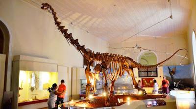 Fóssil Dino Prata Museu Nacional RJ