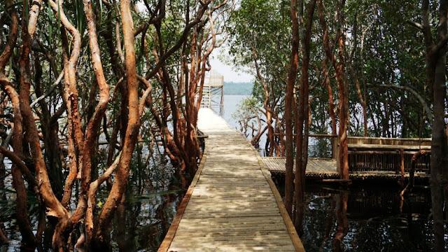 Jembatan-Suak-Oyek-Danau-Laet