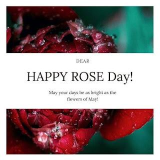 Rose Day Hd Status