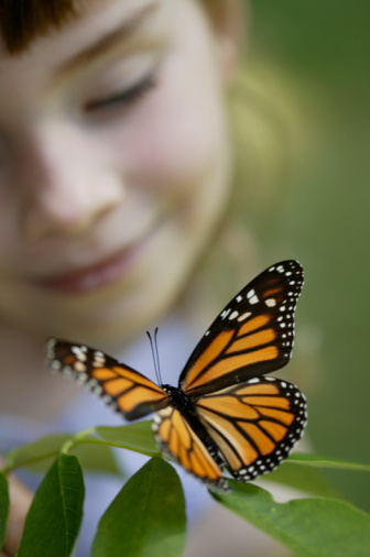 Learn about Creatures, Lakes and Critters at P.J. Hoffmaster State Park's Nature Programs