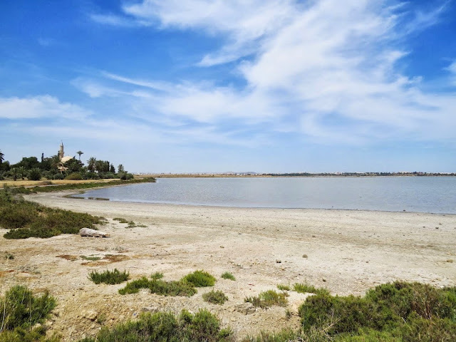 Cyprus Road Trip Itinerary: The Salt Lakes of Larnaca