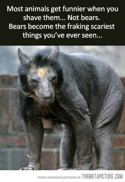 http://themetapicture.com/the-freaking-scariest-thing-youve-seen/