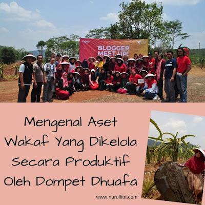 aset wakaf yang dikelola secara produktif oleh dompet dhuafa