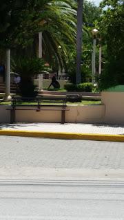 Captan mujer «defecando» en parque Central