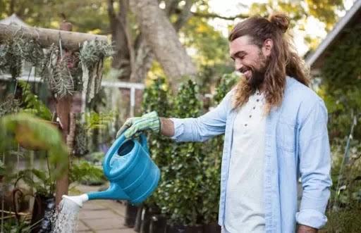 Eliminating Obtrusive Plants