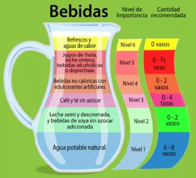 clasificación de bebida dieta