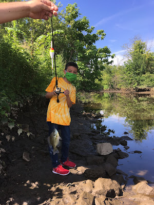 Catching a bluegill with NEAR