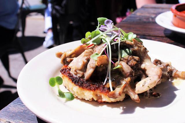Crispy Valencia Rice with Mushroom Ragu at Barcelona Wine Bar in Boston