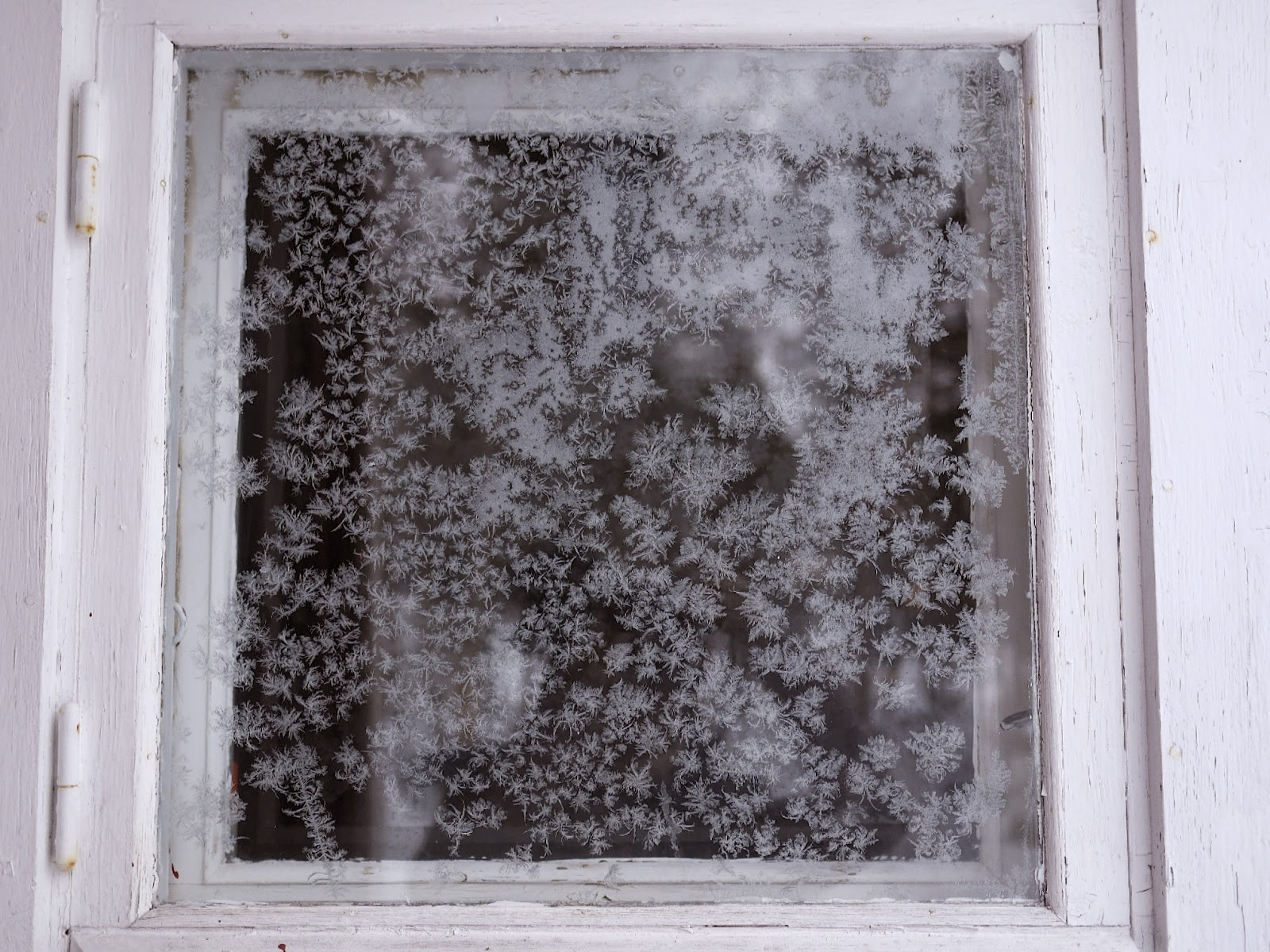 Window Frost, Arctic Circle