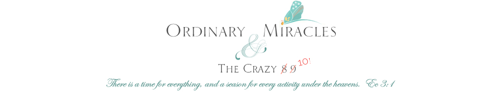 Ordinary Miracles & The Crazy 10