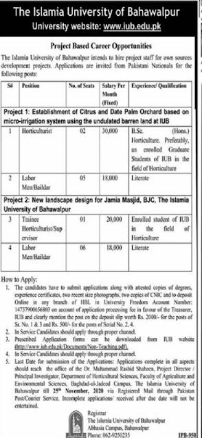 islamia-university-of-bahawalpur-iub-jobs-2020-application-form