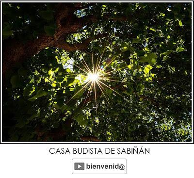 https://sabinanbudismo.blogspot.com/p/bienvenidoanuestracasa.html