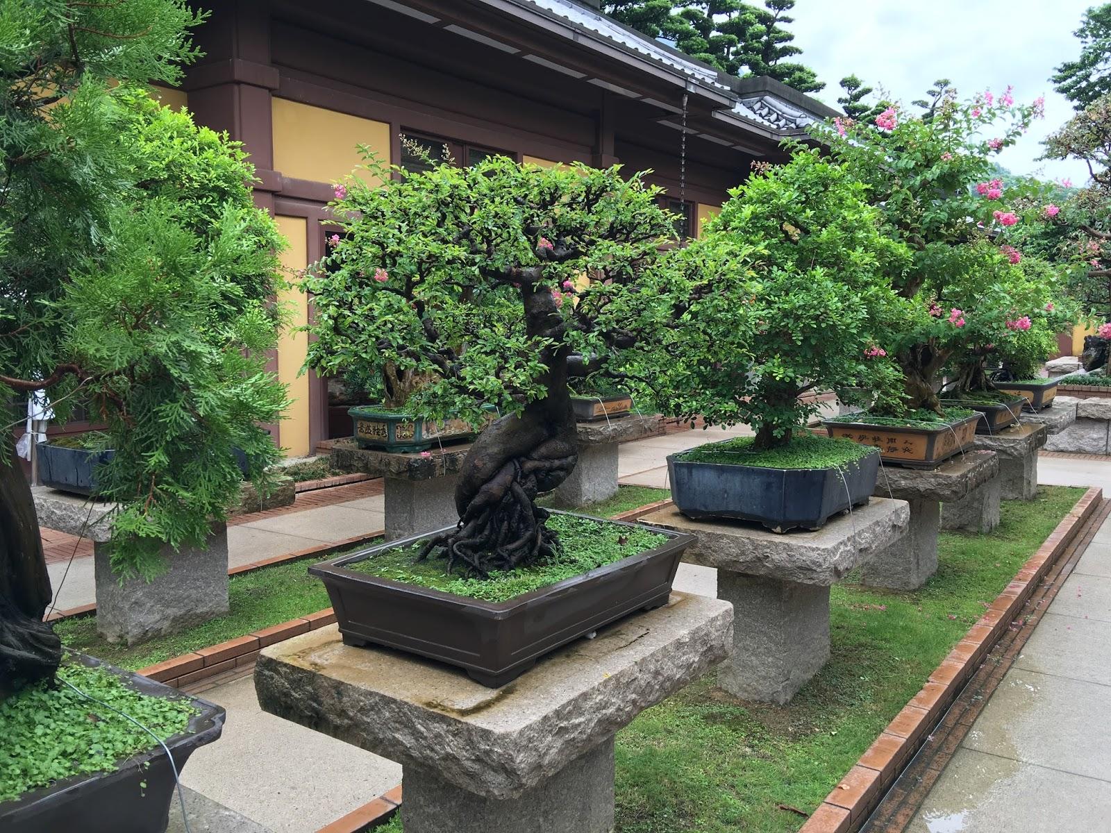 Nan Lian Garden Hong Kong - Aspiring Londoner