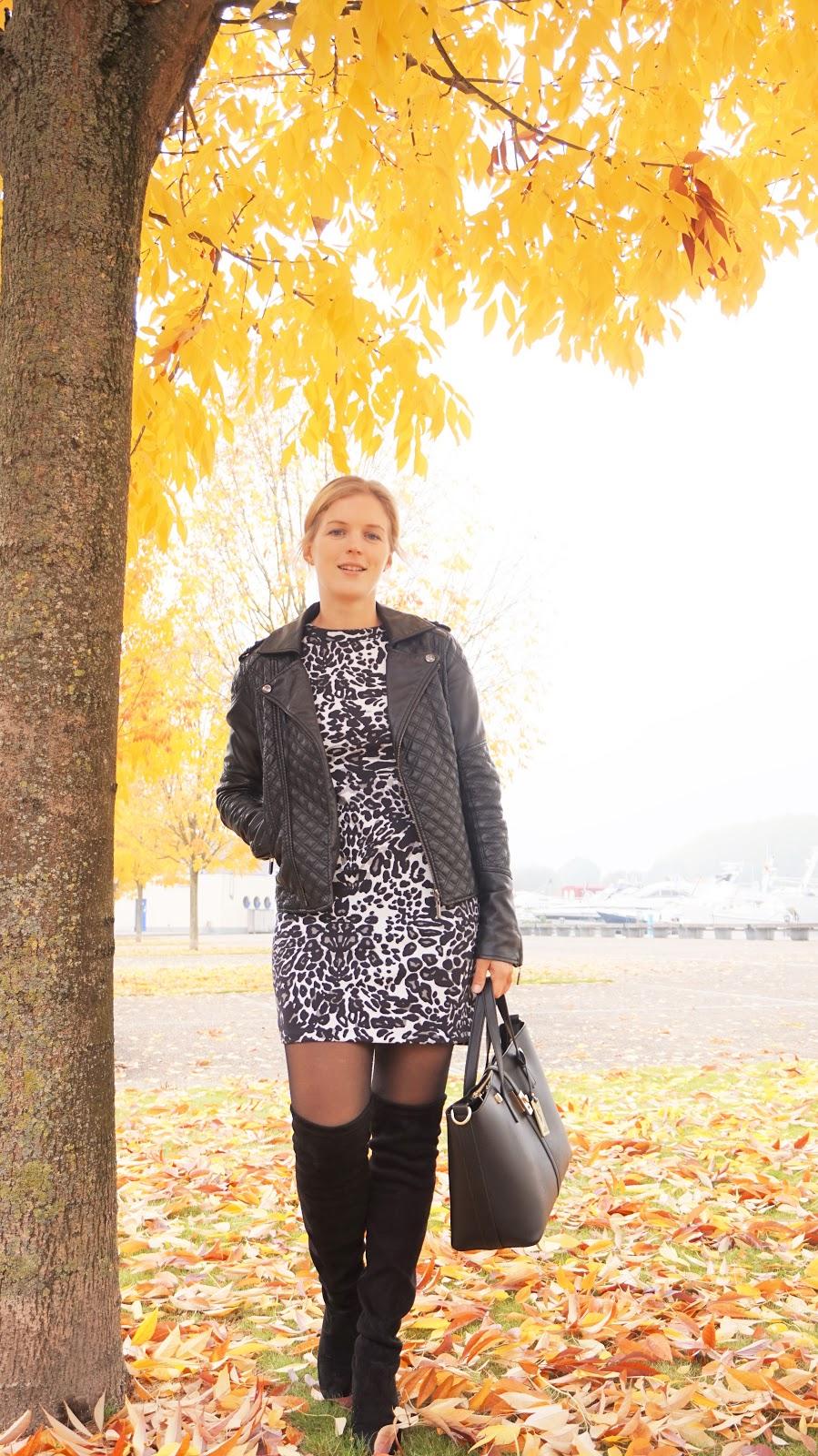 DSC09426 | Eline Van Dingenen