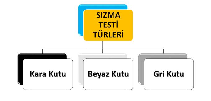 Sızma Testi Türleri ve Sızma Testine Karar Verme