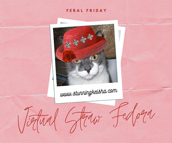 Virtual Straw Fedora Feral Friday