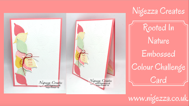 Nigezza Creates with Stampin' Up! Rooted in Nature Colour Combo June Blog Hop