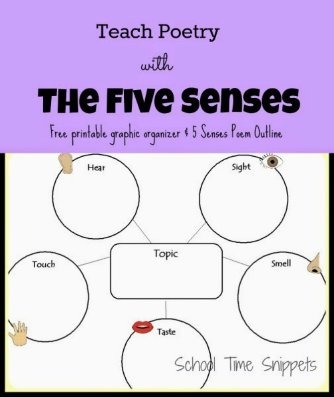 Five Senses Poem Graphic Organizer School Time Snippets