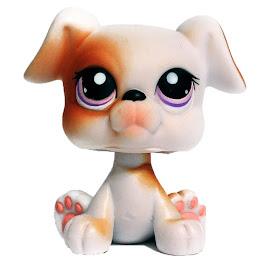 Littlest Pet Shop Multi Packs Boxer (#84) Pet