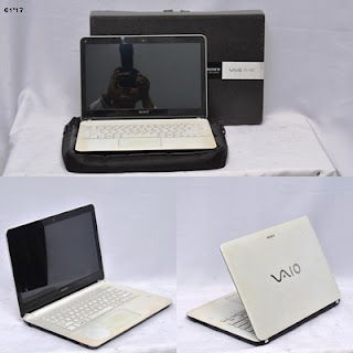 Sony Vaio Fit 14E SVF14212SGW