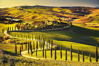 Countryside farm with cypress trees in Tuscany