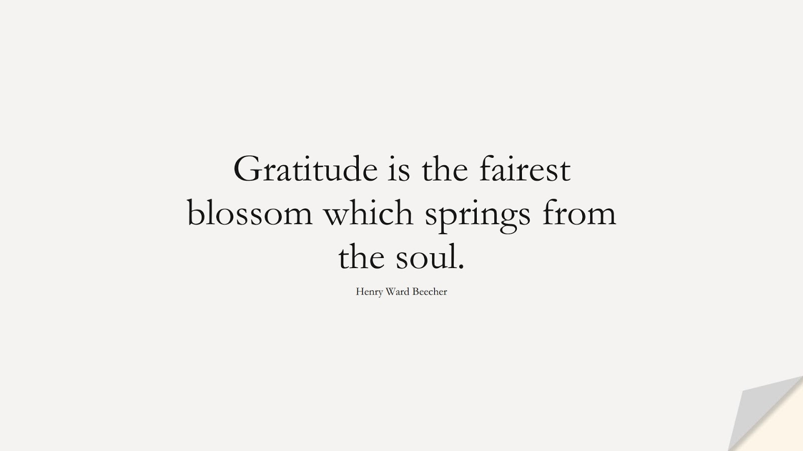 Gratitude is the fairest blossom which springs from the soul. (Henry Ward Beecher);  #ShortQuotes