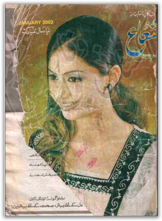Shuaa digest 2002 free download