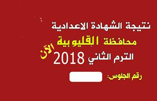 نتيجة الشهادة الاعدادية 2018 محافظة القليوبية الفصل الدراسي الثاني برقم الجلوس والاسم