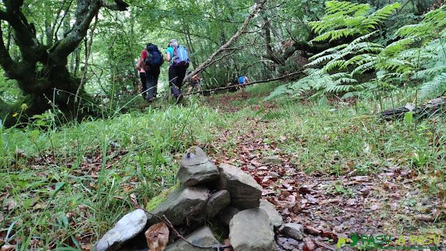 Hito subiendo por el camino del Bosque Fana, Ponga