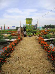 Jombang City Guide Agrowisata Taman Sayur Banjarsari Keukenhofnya Jombang