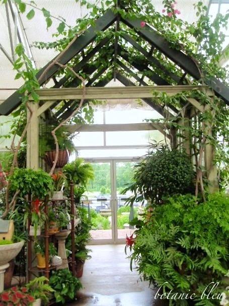 Botanic Bleu: The Greenery Garden Center Part 2