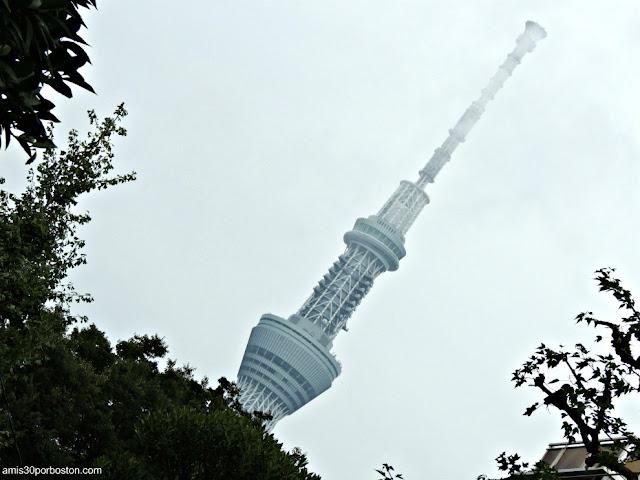 Tokyo Skytree entre Niebla