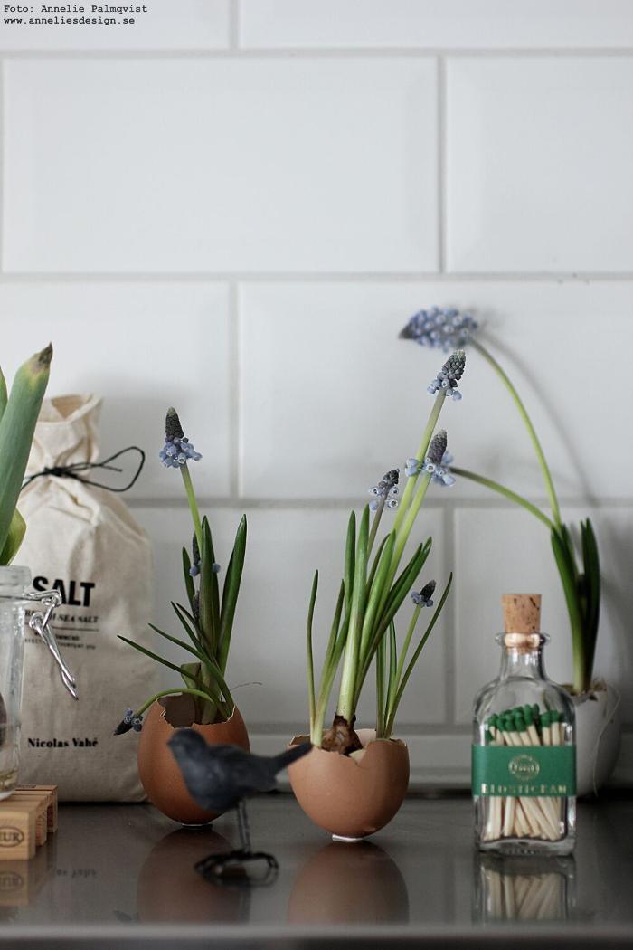 annelies design, webbutik, eldstickan, tändstickor, flaska, äggskal, vårlökar, blomma, blommor, påsk, påsken, påskpynt, kök, inredning, lastpall, lastpallar, glasburk, inspiration, tulpaner, tulpan, lök