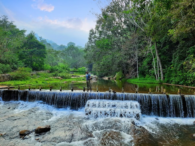 Wild drives in Lower Bhavani, Shollurmattam & Bommiyampadi Tribal zone