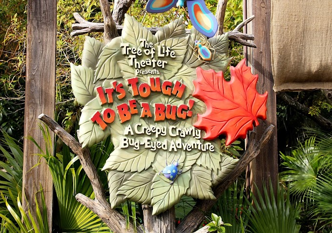 Music Behind the Ride: It's Tough to Be a Bug