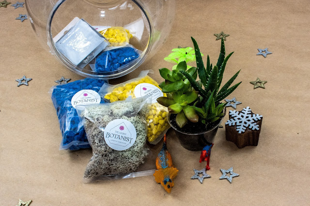 A plastic fish bowl, blue and yellow gravel, plastic dinosaur toys and a succulent are a fun gift so children can make their own terrarium