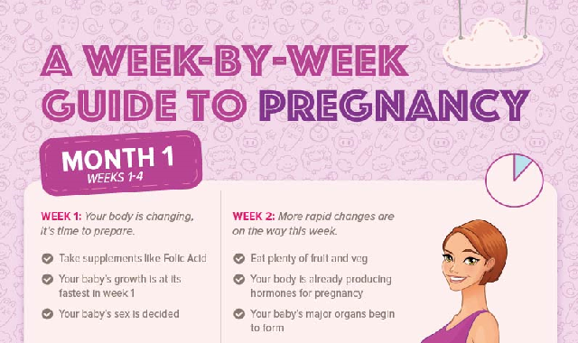 A Week by Week Guide to Pregnancy #infographic