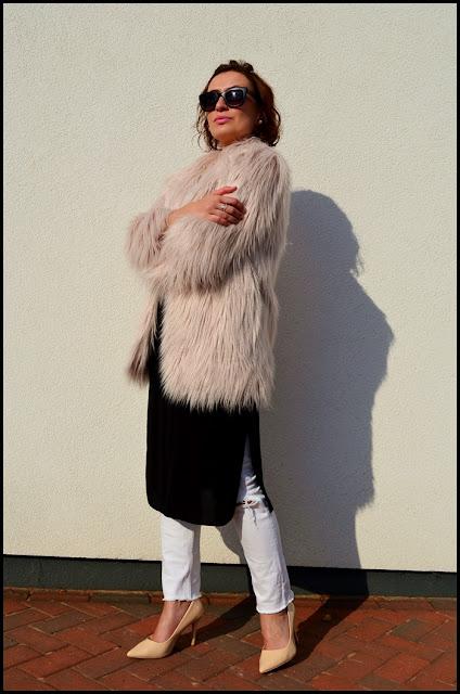 Fur Coziness