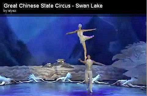 Swan Lake Chinese Restaurant Winterley